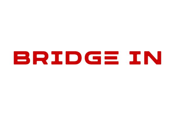 Bridgein, Lda.